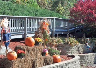Fall Garden in Barrington